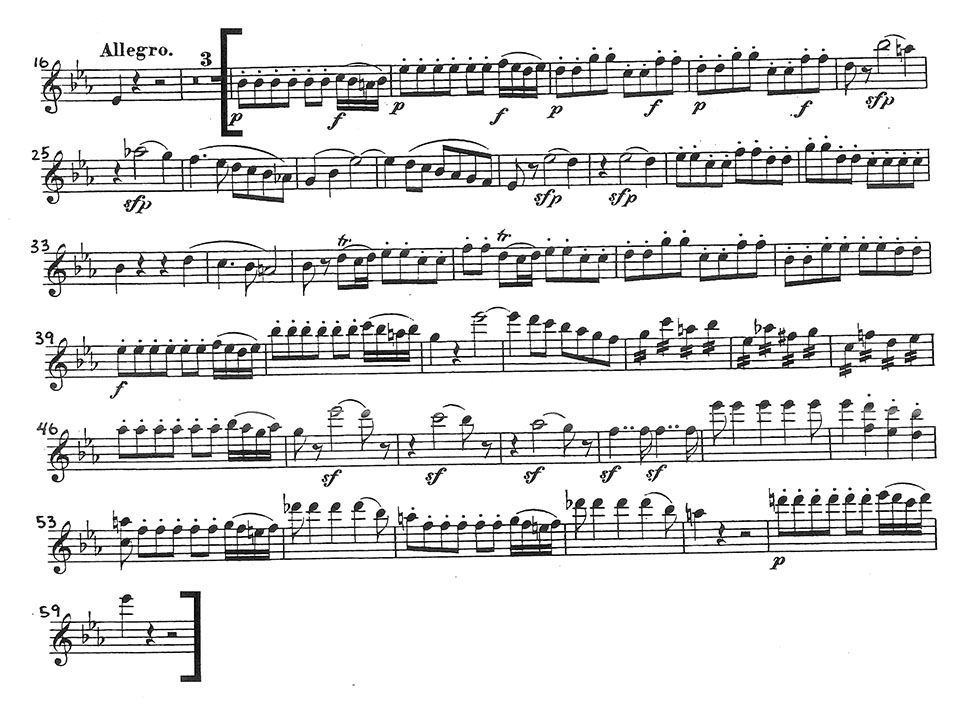 mozart-magic-flute-vln-1-orchestra-audition-excerpt