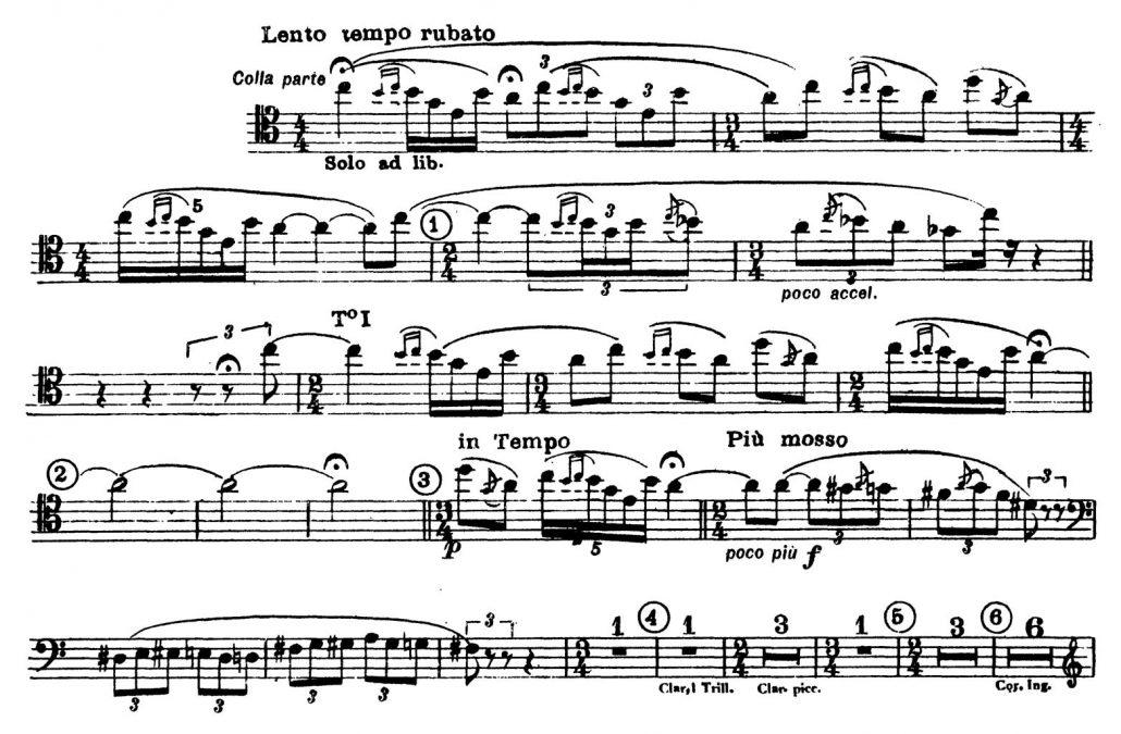Stravinsky_Rite_of_Spring_Bassoon orchestra excerpt