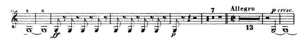 beethoven_fidelio-orchestra-audition-excerpt-horn-2d